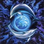 宇宙の遠足